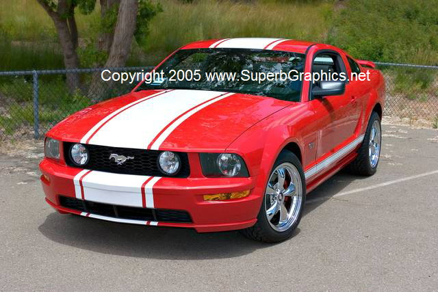 "2005-2009 Mustang 20"" wide single Rally Stripe NEW!!"