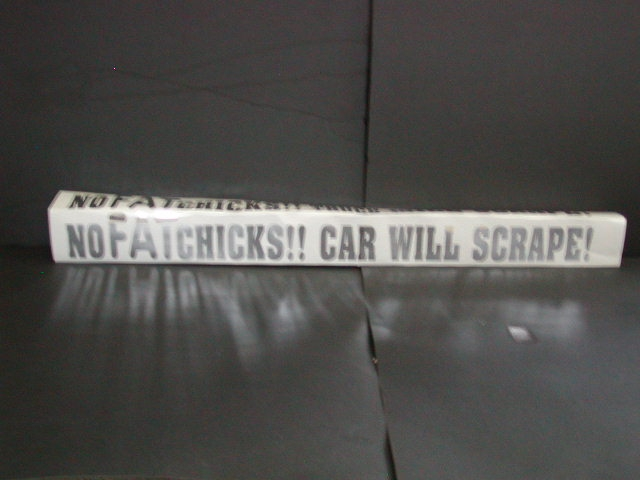 No FAT chicks car will scrape !! Decal
