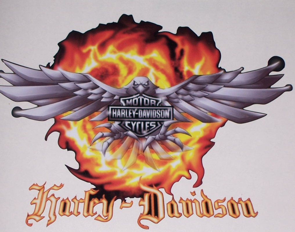Harley Davidson Eagle Flames FULL COLOR Trailer Or Wall 25 X 36 Decal  Sticker Part 54