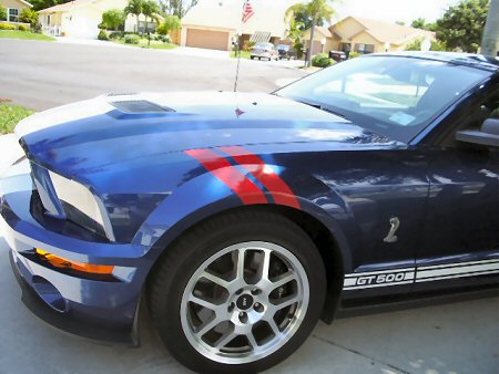 �Mustang Hash Mark Stripes