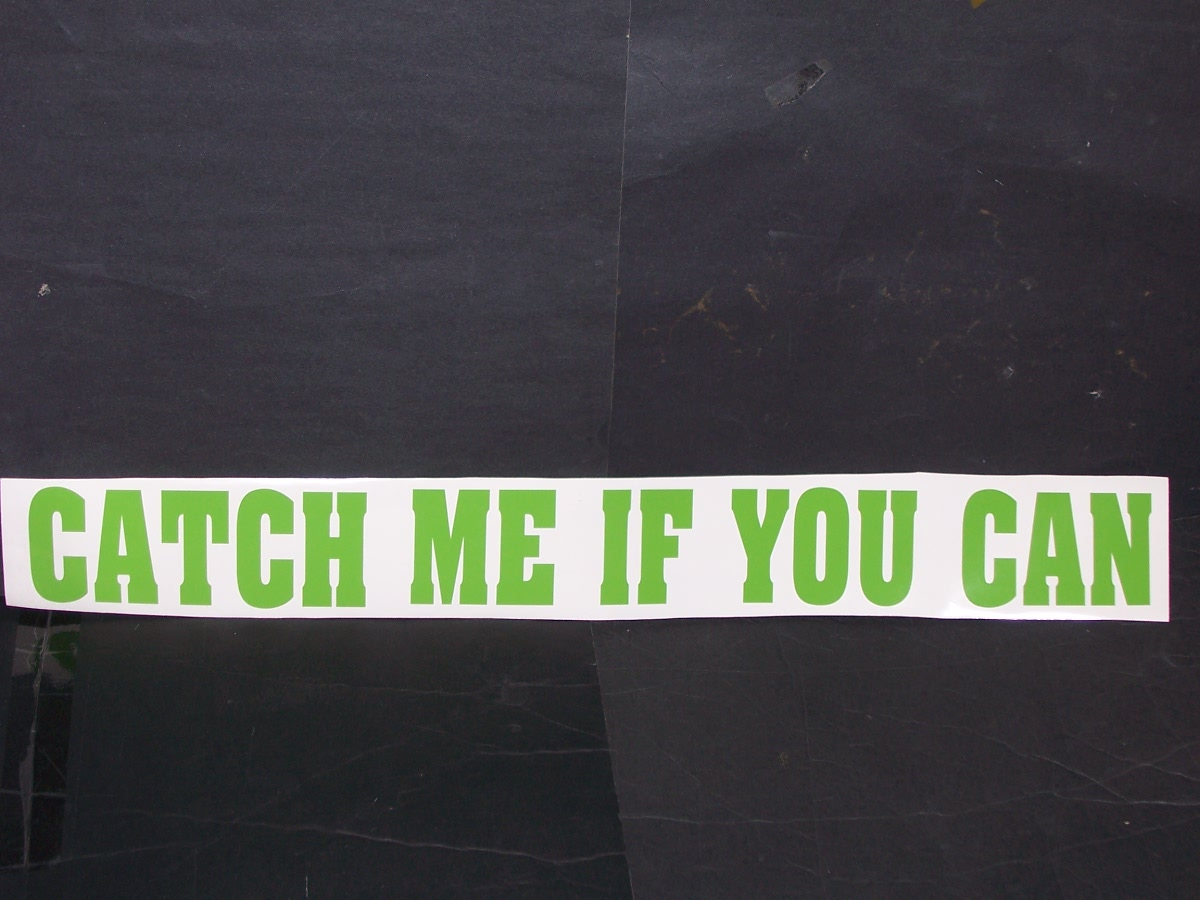 Catch Me If You Can Decal
