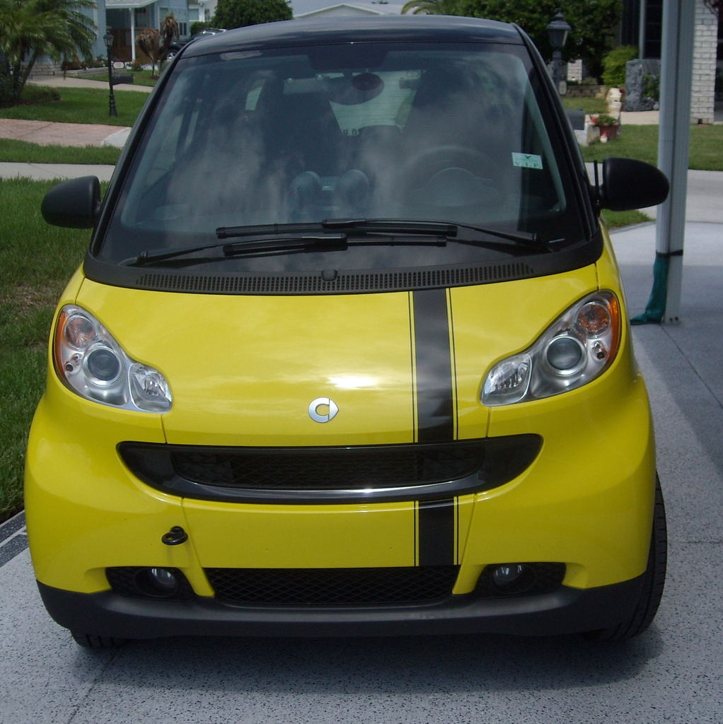 Smart Car Single Offset Stripe set