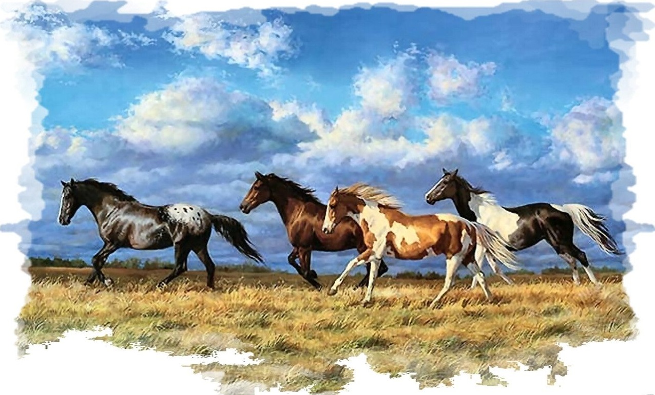 horse decals for walls