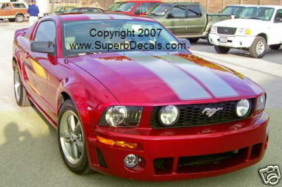 "Mustang 10"" Outined Rallys Stripes"
