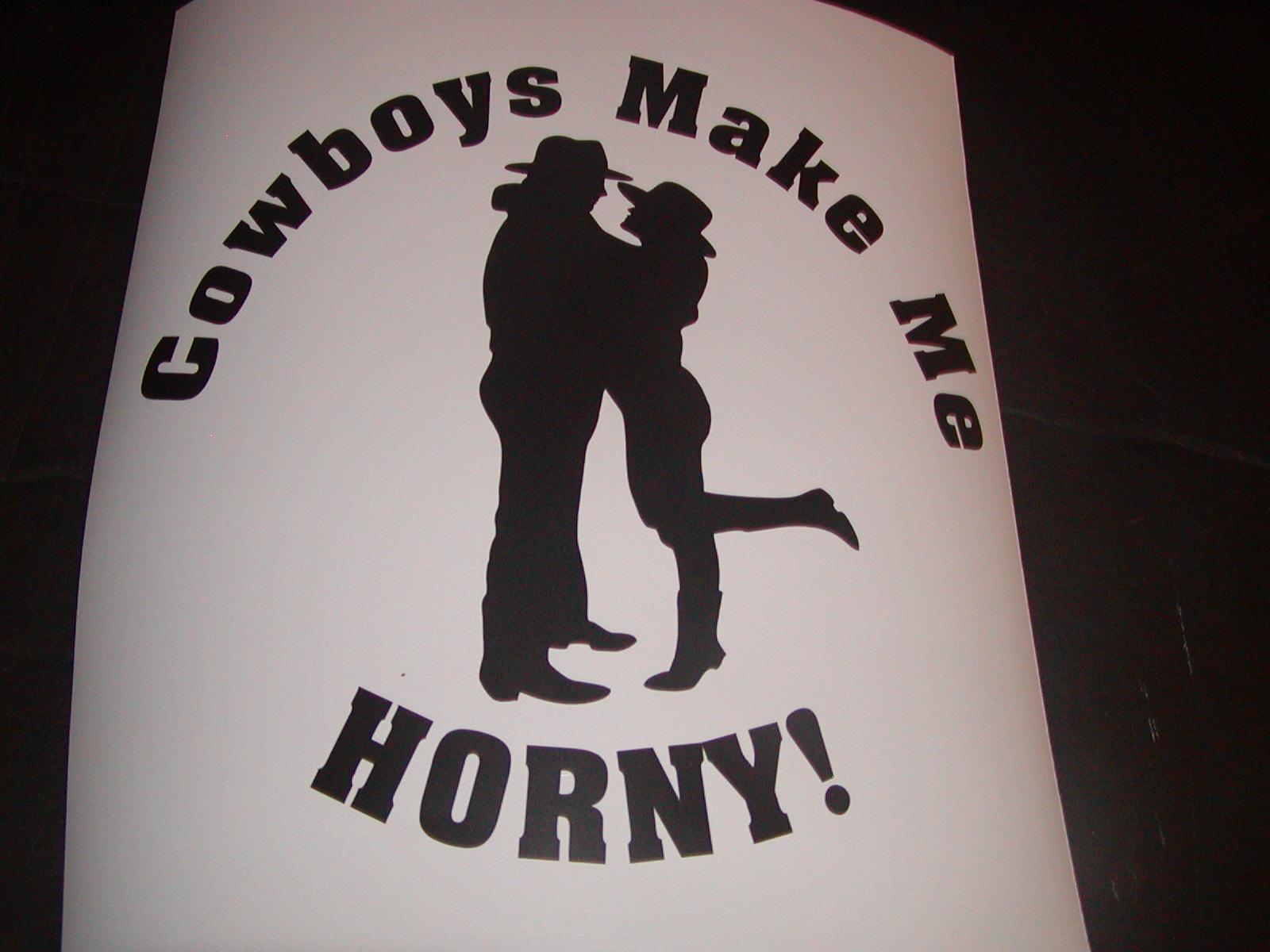 Cowboys Make Me Horny Decal
